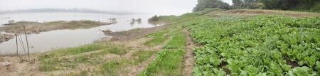 River Mountain Thailand Mekong Vegatable Farm Stock Photo
