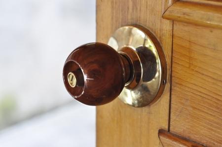 Metal Brass Door Knob Wood
