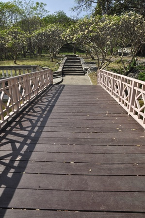 Way Bridge Wood Garden Park Long
