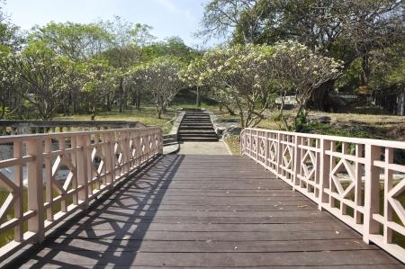 Way Long Bridge Wood Garden Park