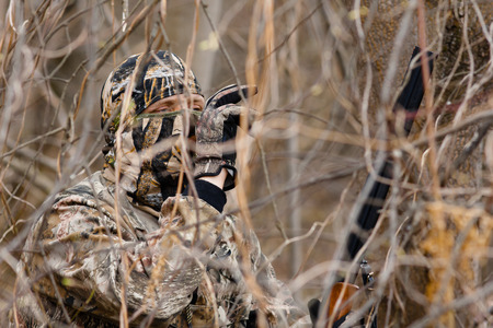 verborgen jager in struiken noemt eend