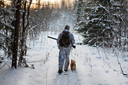 snow forest: hunter on the skis on winter hunting
