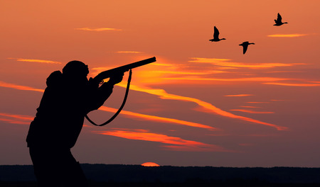 wild duck: Silhouette of men on the hunting
