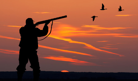wildlife shooting: Silhouette of men on the hunting