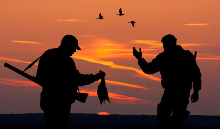 duck: Silhouette of two mens on the hunting