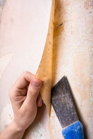 hands removing old wallpaper from wall photo