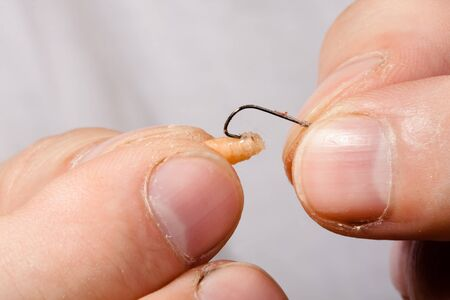 worm gear: Fishing lure on the hook in hands of fishermen