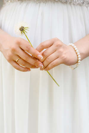 bride bangle: hands of the bride with the dandelion, closeup Stock Photo