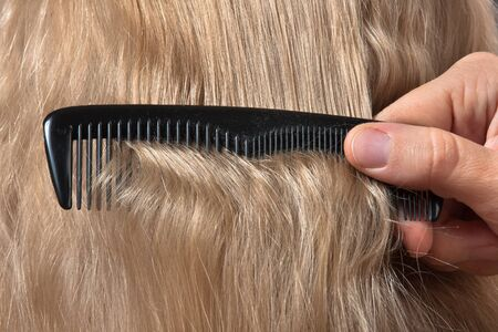 coiffeur: hand of hairdresser combing blonde hair, closeup