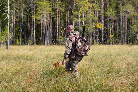 hunter man: hunter with Finnish Spitz on the swamp on autumn hunting Stock Photo