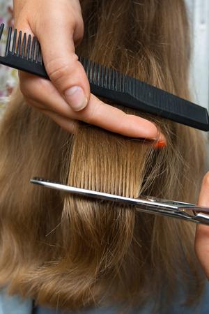 cutting hair: hands of hairdresser cutting hair with scissors, closeup