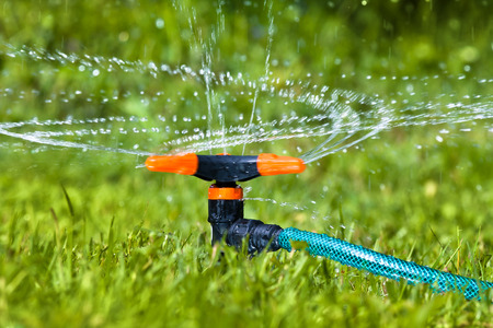 garden lawn: garden sprinkler for watering the lawn or garden Stock Photo