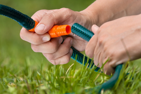 hosepipe: hands connected garden hose for watering lawn or garden