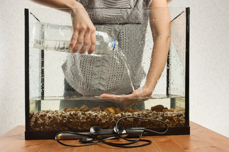 aquarist: hands of aquarist pouring water in aquarium from a bottle