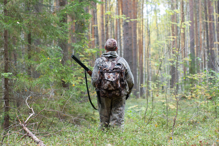hunter in hunting camouflage with shotgun walking in the forest in autumn Stock Photo
