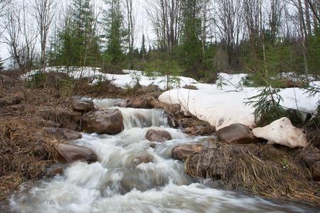 l'écoulement rapide de l'eau de fonte dans la forêt de printemps Banque d'images