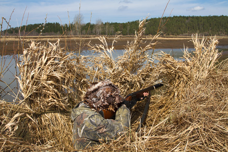 duck hunter aims a shotgun sitting in a blind of reeds on the shore