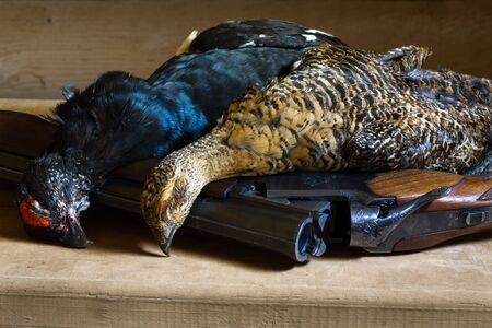 hunting trophies (two downed blackcocks) lie on a wooden table with the shotgun