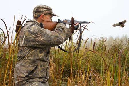 a hunter aims a shotgun at a flying duck among cattails on a foggy morning