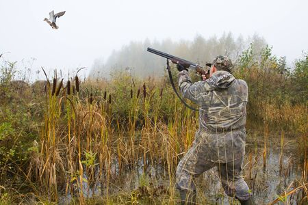 a hunter shoots a shotgun at a flying duck in a swamp on a foggy morning