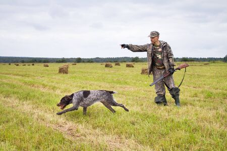 the hunter sends the hunting dog to search for birds with a hand gesture in a mown meadow 스톡 콘텐츠