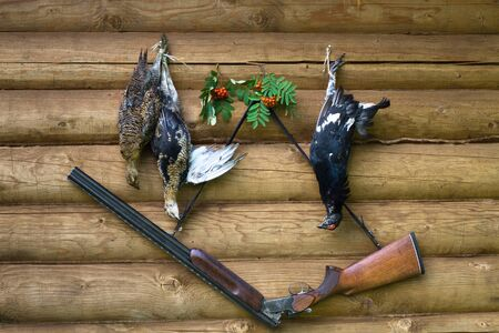 a hunting shotgun and three downed grouses hanging on the wall of a log house