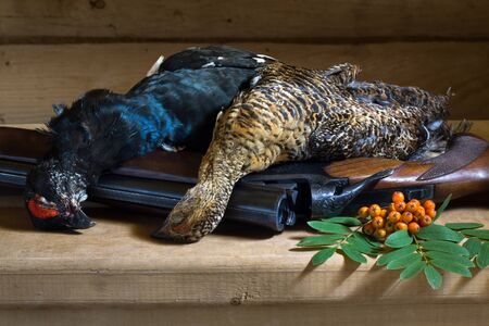 hunting trophies (blackcock and hen) and Rowan berries lie on a wooden table on top of a shotgun