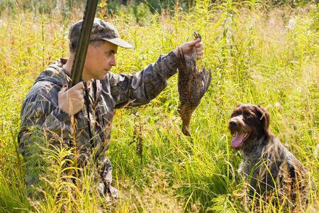 hunter takes downed grouse from a dog (german wirehaired pointer) during hunting