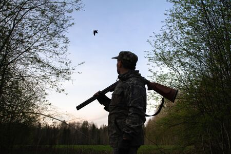 A hunter with an unloaded shotgun on his shoulder stands in the dusk in a forest clearing and sees at a male woodcock, which makes a courtship flight (Roding). 스톡 콘텐츠