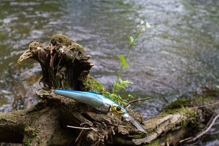 blue minnow wobbler caught on an old overgrown snag on the river bank Banque d'images
