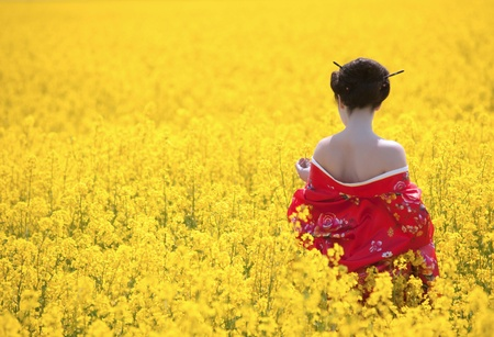 Geisha in the yellow field photo