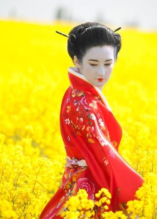 Geisha in the yellow field Stock Photo