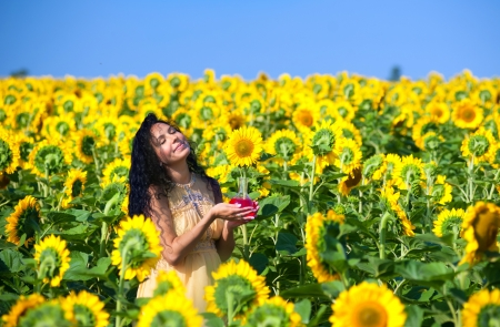 Pregnant woman in sunflowers photo