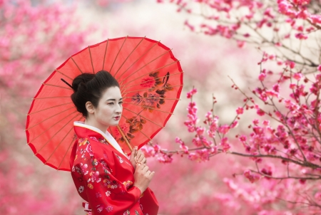 Asian style portrait of a woman with red umbrella, flowering tree branches background
