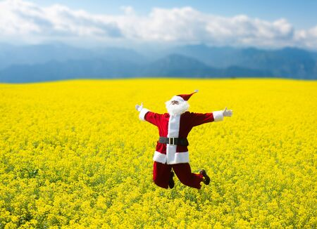 Christmas Santa Claus  jumping in blooming yellow field. Spring vacation concept. 写真素材