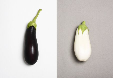 Dark and white eggplants isolated on duotone background. Difference concept.