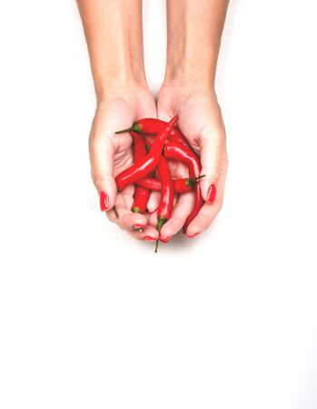 Female hands holding a handful of fresh red hot chilli peppers. Isolated on white background. 写真素材