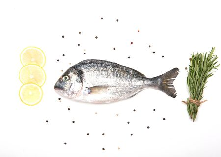 Fresh Dorado Fish isolated on white background ingredients for cooking. View from above.