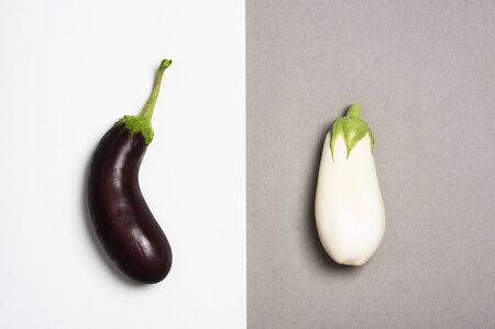 Dark and white eggplants isolated on duotone background. Difference concept. 写真素材 - 129450822
