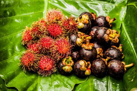 Fruits, in the jungle, Chiang Rai region, Thailand