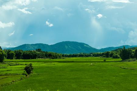 Landscape, Plain of Jars, Laos