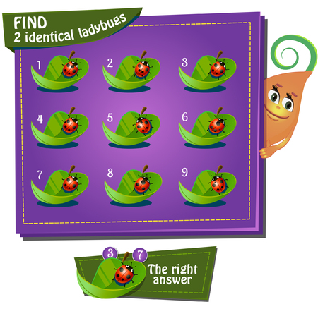 identical: Visual Game for children. Task: find 2 identical ladybugs