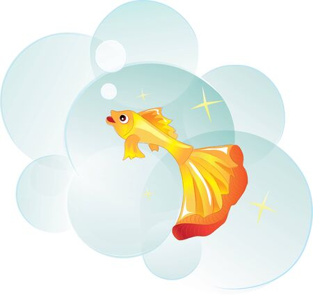 daydreaming: goldfish as a symbol of wish-fulfillment