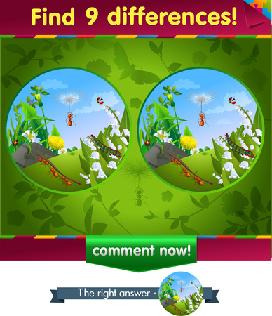 iq: visual game for children and adults. Task to find 9 differences in the summer illustration  with  forest insects.