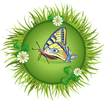 sedge: Insect and summer nature icon. butterfly in a clearing in a circle around flowers Illustration