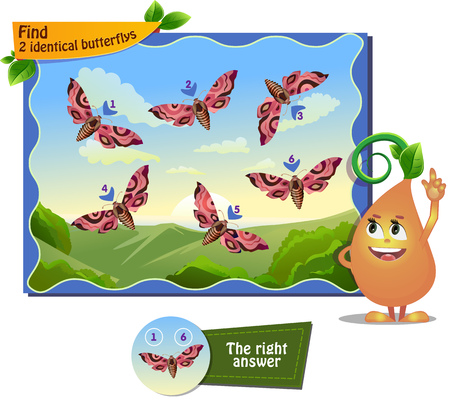 identical: visual game for children . Task to find 2 identical butterflys