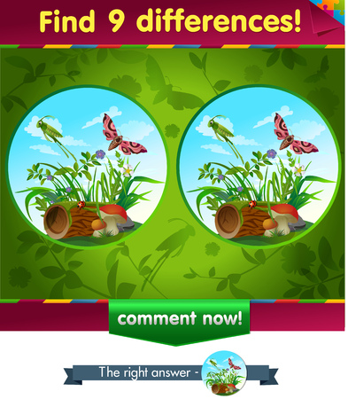 find: visual game for children and adults. Task to find 9 differences in the summer illustration  with  forest insects.