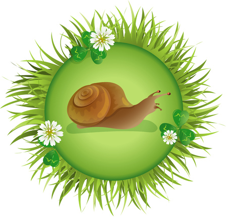 crawling: Insects and summer nature icon. snail crawling on the meadow Illustration