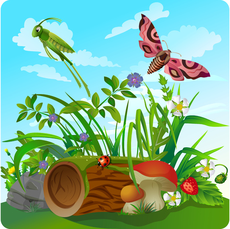 clearing: vector childrens illustration of nature, in the form of insect life in the forest, in a clearing in the grass
