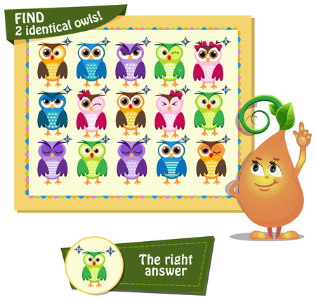 identical: Visual Game for children. Task: find two identical owls!